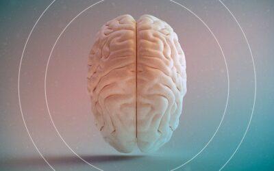 Hidrocefalia. O que é? Como é feito seu tratamento?